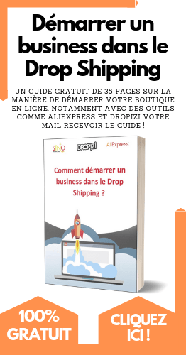ebook special dropshipping